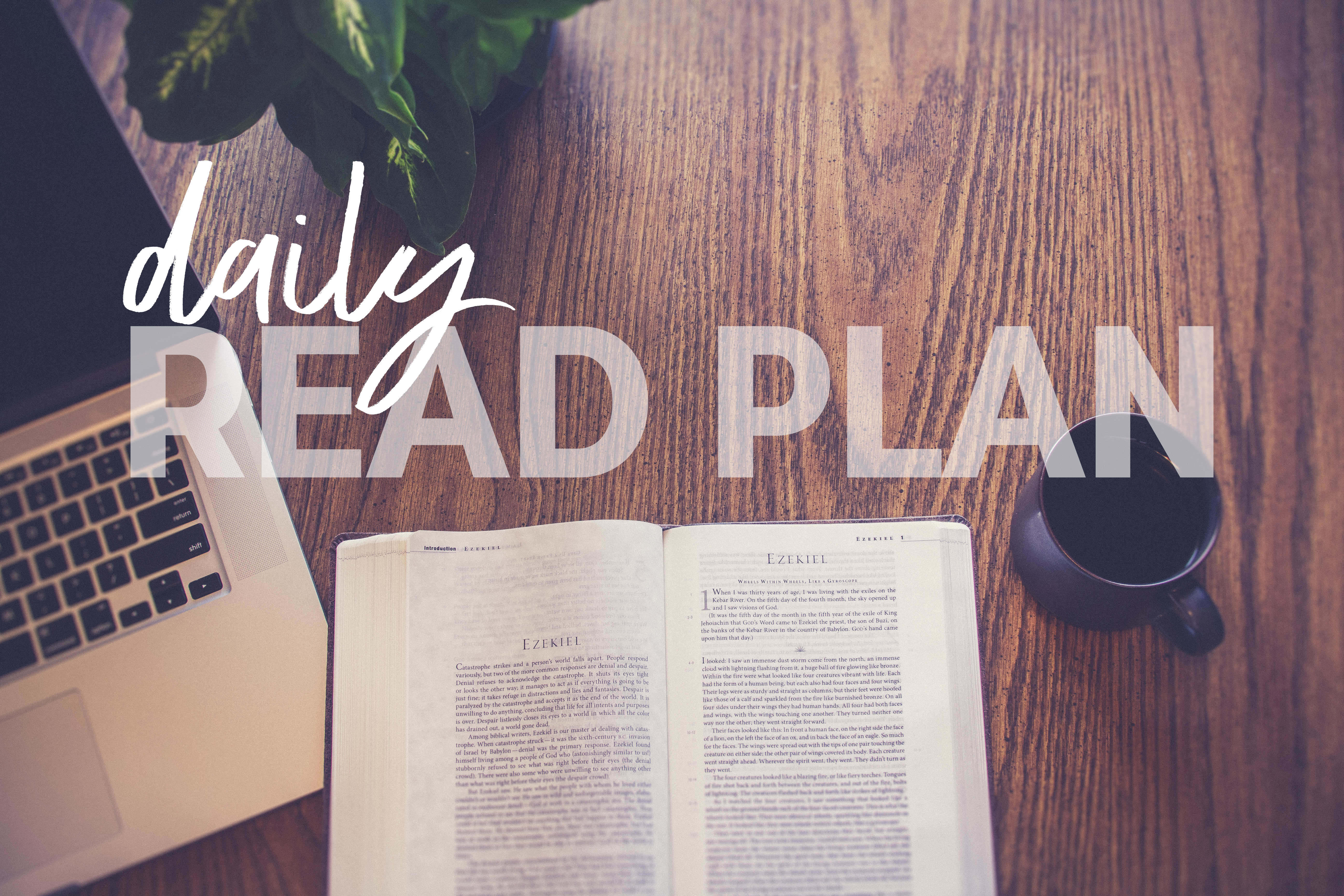 READ plan May17